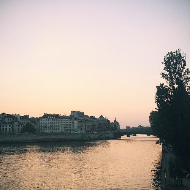 #vscocam #vsco #latergram #paris #seine #river #france